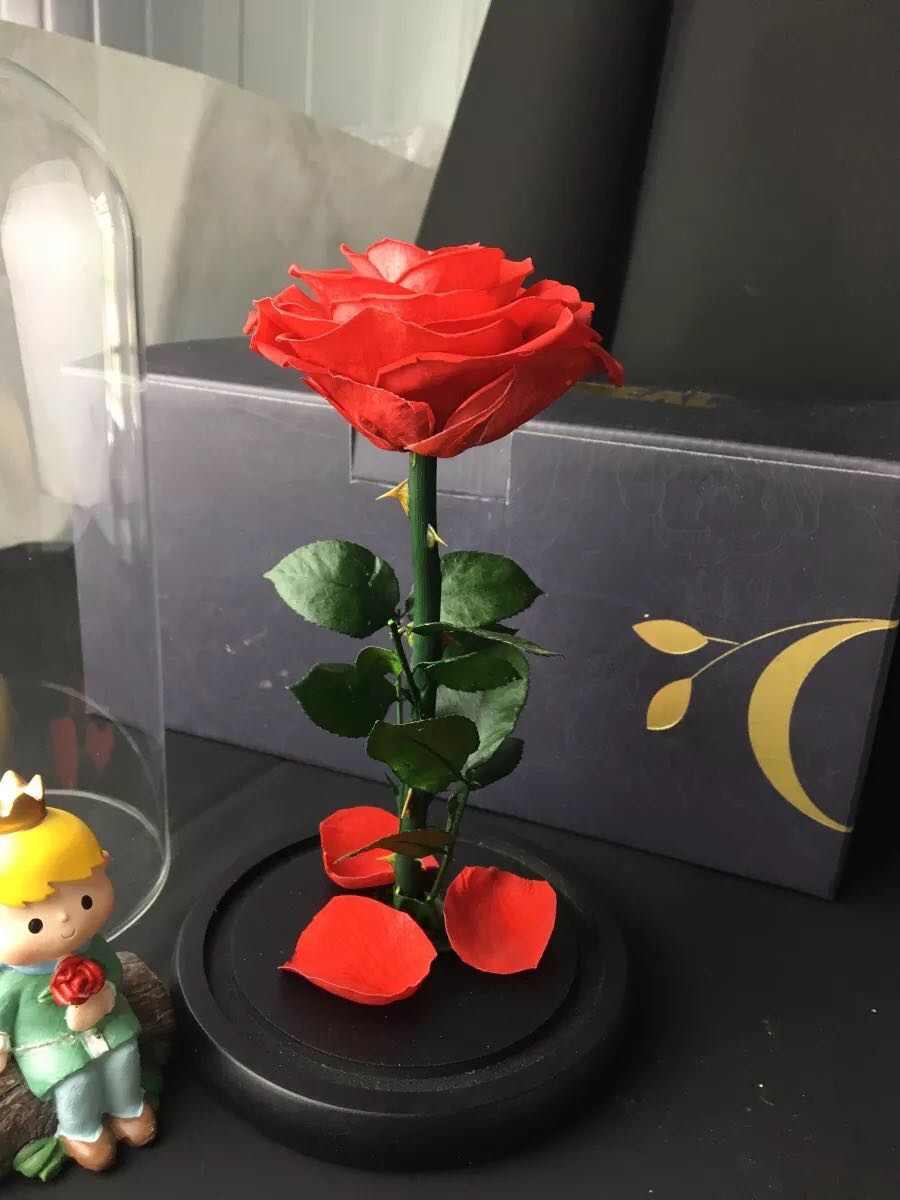 浪漫的母亲节礼物送妈妈,高颜值的玻璃罩永生玫瑰